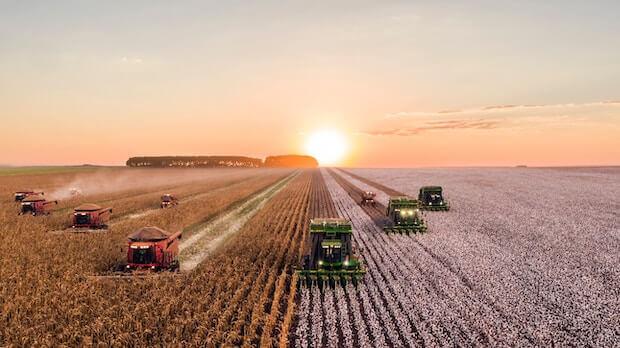 Gentechnik in der Landwirtschaft